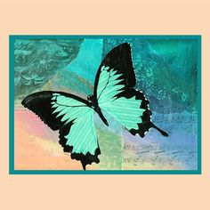 Love turquoise and butterflies!