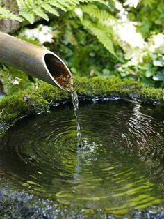 Moss covered garden statues   ... Collection Galleries World Map App Garden Camera Finder Flickr Blog