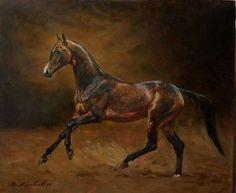 Stallion Sukhty (Melebaidak x Merver, Gelishikli line), bred by Stavropol stud, Russia ©Yaroslav Kolobaev (2017) //Russia
