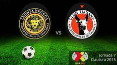 Tijuana y Leones Negros, los más redituables de la Liga MX