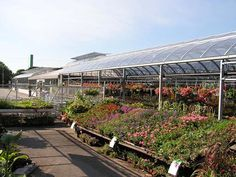 """7 Marketing """"Must-Haves"""" for Your Retail Greenhouse, Garden Center & Nursery"""