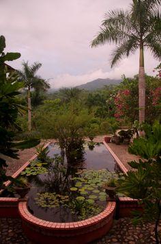 Photo Gallery - Vallarta Botanical Gardens