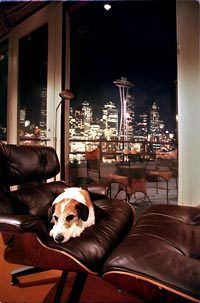 """The view from Frasier Crane's condo. -m :: With the Space Needle and the Seattle skyline in the background, Eddie takes a rest in the fashionable, high-level condominium of Frasier Crane, on NBC's """"Frasier."""""""