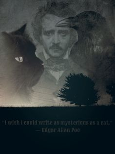 """I wish I could write as mysterious as a cat."" ― Edgar Allan Poe"