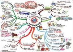 Mind maps from http://learningfundamentals.com.au/resources/