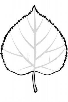 Leaves to Color - Yankee Foliage - Your Source for New England . Leaf Coloring Page, Coloring Pages, New England Fall Foliage, Printable Leaves, Leaf Outline, Leaf Drawing, Tree Images, Aspen Trees, Tree Quilt
