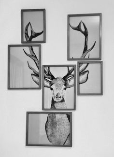 Wall elk art in multiple frames. Can do this with any picture.// good for a man room @austinklee