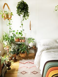 Amber Dubois and her husband, Lacy Rhoades live in 650 square foot apartment on the 2nd floor of a Park Slope brownstone built in 1899. Their style is inspired by nature, art, design and their travels together. A romantic Pisces, Amber's favorite room in the apartment is the bedroom. Since the rest of the apartment …