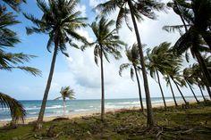 Phu Quoc Island, Vietnam #amazingviews #phuquoc #vietnam #salindaresort #salindapremium #leisure