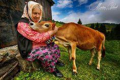 Trabzon, Turkey People Of The World, Animals Of The World, Istanbul, Turkey Culture, Trabzon Turkey, Turkish People, Desert Dream, Turkish Beauty, Black Sea