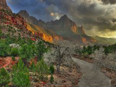"Do You Take Photographs or Make Them? Author: Tedric Garrison. Photo: ""Zion National Park"" captured by Arnel's Artworks. http://www.picturecorrect.com/tips/do-you-take-photographs-or-make-them/"