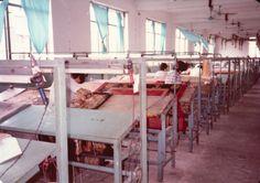 Cork carvers. Beijing.