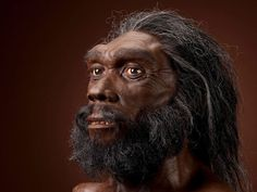 An Evolutionary Timeline of Homo Sapiens | Science | Smithsonian Magazine Homo Heidelbergensis, Homo Habilis, Forensic Facial Reconstruction, Biological Anthropology, Human Fossils, Prehistoric Man, Prehistoric Dinosaurs, Human Genome, Early Humans