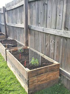 Making Raised Garden Beds, Raised Garden Planters, Vegetable Planters, Raised Planter Beds, Raised Vegetable Gardens, Garden Planter Boxes, Building A Raised Garden, Veg Garden, Raised Beds
