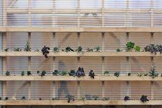 Future Pavillon Frankfurt by Ian Shaw Architects