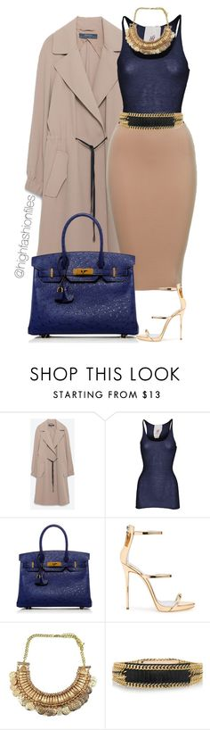 """Untitled #2187"" by highfashionfiles ❤ liked on Polyvore featuring Zara, Friendly Hunting, Hermès, Giuseppe Zanotti and Balmain"