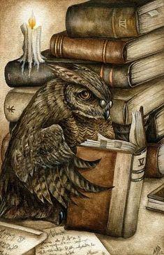 Creative Illustration, Illustration Art, Wise Owl, Owl Art, Book Worms, Illustrators, Fantasy Art, Books To Read, Reading Books