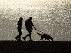 A couple of people walk a dog along a beach on in Fairfield, Conn. Temperatures across much of the New York metropolitan area continued to be unseasonably warm with a record breaking mid 60s being recorded in many areas. The warm weather is expected to last for the next few days.  Spencer Platt, Getty Images