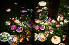 D I E T L I N D W O L F: plateflowers