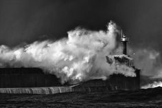 Storm by Tailfox  on 500px