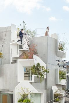 tree-ness house, akihisa hirata tangles indoor and outdoor spaces for 'tree-ness house' in tokyo