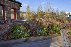Shoreditch Roof Terrace / London Garden Designer