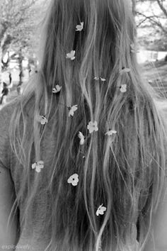 dazee's in my hairr