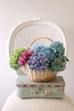 basket full of colorful hydrangeas