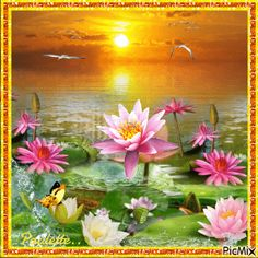 Good Morning Gif, Stickers, Butterflies, Gifs, Greeting Cards, Beautiful, Flowers, Plants, Painting