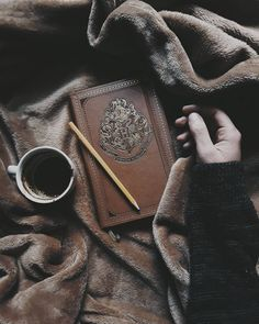 Hogwarts School of Witchcraft and Wizardry Harry Potter Tumblr, Harry Potter World, Mundo Harry Potter, Harry Potter Pictures, Harry Potter Love, Harry Potter Universal, Harry Potter Fandom, Harry Potter Hogwarts, Harry Potter Things
