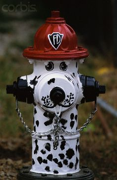 Fire Hydrant Painted as a Dalmatian, lucky if you have one in your yard!