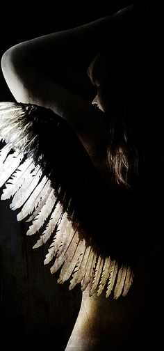 """""""She made broken look beautiful and strong look invincible. She waked with the universe on her shoulders and made it look like a pair of wings. Angels Among Us, Angels And Demons, Fallen Angels, Michel Fugain, Ange Demon, White Wings, Angel Art, Archetypes, Angel Wings"""