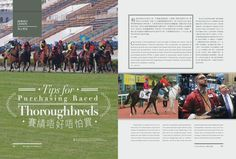 Tips for Purchasing Raced Thoroughbred Read more at Issue 5 http://issuu.com/blacktype/docs/150127_blacktype_issue5/1… #blacktypehk #horseracing #luxury