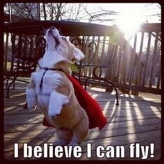 I think i can fly