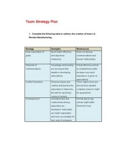 mgt 311 team strategy plan