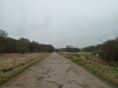 Fairmead Road http://www.walksandwalking.com/epping-forest/
