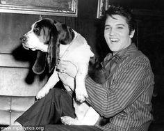 You ain't nothing but a hound dog... #ElvisPresley #MDQ