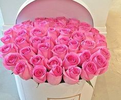 Pink roses.....