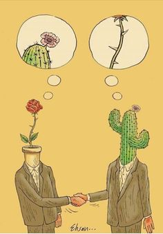 Cactus and rose