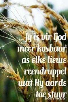 Jy is kosbaar vir God ♥ Gospel Quotes, Jesus Quotes, Bible Quotes, Bible Verses, Afrikaanse Quotes, Goeie More, Praise God, People Quotes, True Words