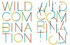Wild Combination - Kelli Anderson