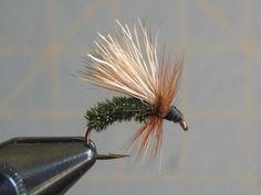 Peacock Caddis - Dry Fly.