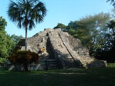 Temple of Chacchoben or Red Corn in Mayan .  This is located West of Costa Maya and the town of Mahahual in Quintana Roo South. #mexico