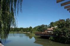 Voglio il mondo a colori: Chicago, The Botanic Garden
