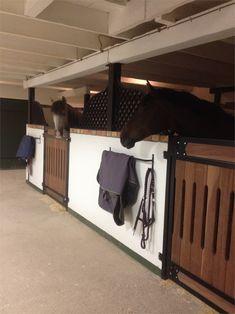 Hästarna på plats