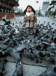 This must have happened to me when I was a kid, hence my severe phobia of birds!