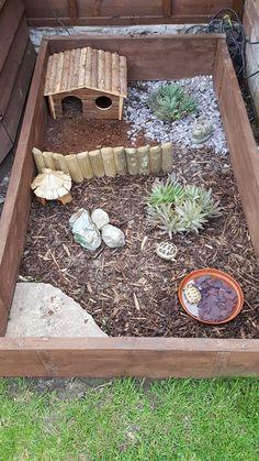 horsefield tortoise outdoor area!