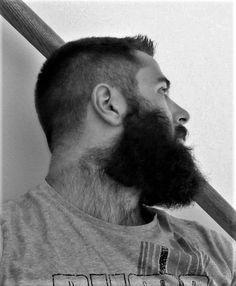A Celebration of the Hairy Man Beard And Mustache Styles, Beard Styles For Men, Beard No Mustache, Hair And Beard Styles, Hair Styles, Scruffy Men, Hairy Men, Bearded Men, Beard Images