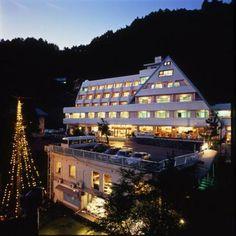 Mizuno Hotel Mt Fuji