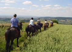 Pony Trekking on the North York Moors - Boltby Trekking